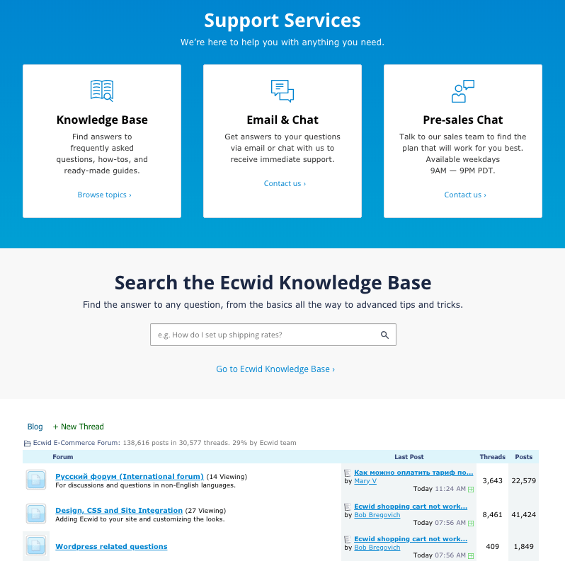 Screengrab showing Ecwid support services