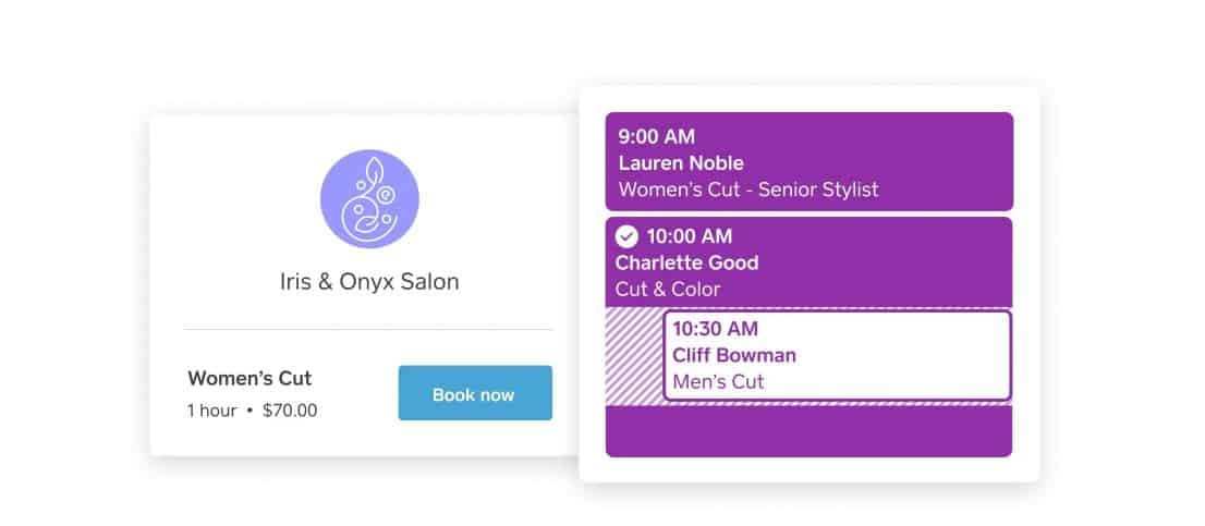 Screengrab of Square Appointments Booking Tool